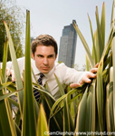 Funny image of a businessman pushing aside tall fronds, searching through an urban jungle environment for threats or opportunities in the business world. He is wearing a dress shirt and tie but no coat. Tall building visible in background behind him.